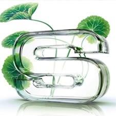 Sisley Perfumes Masculinos