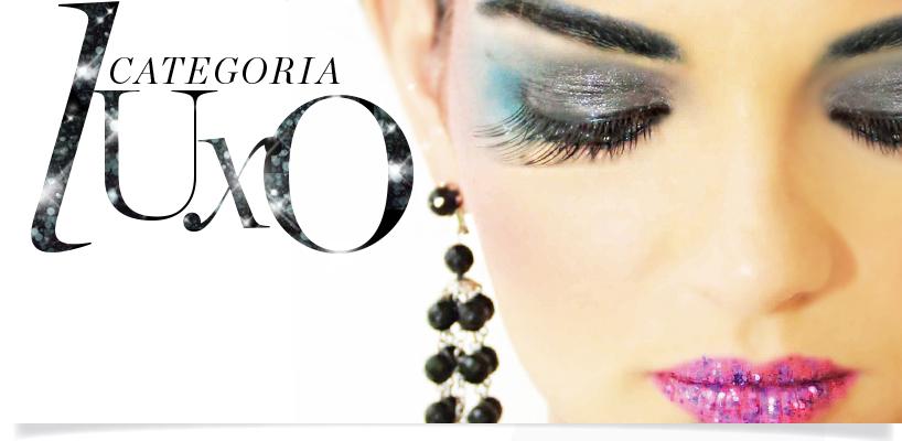 Looks de Carnaval 2014 banner