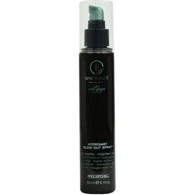 Paul Mitchell Awapuhi Wild Ginger Hydromist Blow-Out Spray - Spray Fixador Capilar 150ml