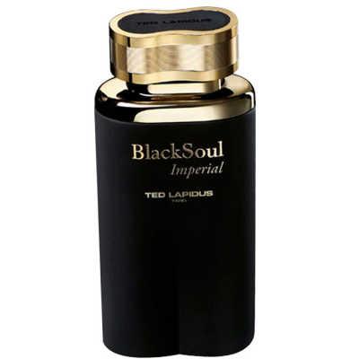 Ted Lapidus Black Soul Imperial Perfume Masculino - Eau de Toilette 30ml