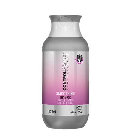 Control System Smoothing - Shampoo 120ml