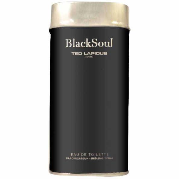 Ted Lapidus Perfume Masculino Blacksoul - Eau de Toilette 30ml