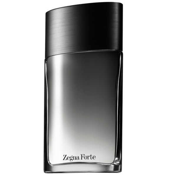 Zegna Forte Ermenegildo Zegna Eau de Toilette - Perfume Masculino 100ml